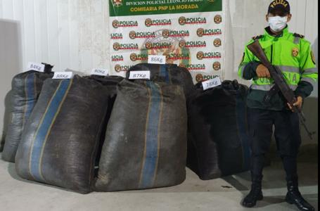 Encuentran abandonada media tonelada de hoja de coca en La Morada