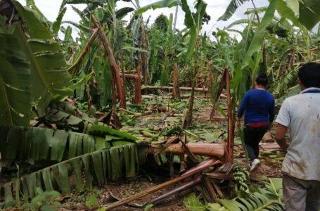 Vientos fuertes afectaron 51 viviendas y destruyeron 48 hectáreas de sembríos en Leoncio Prado
