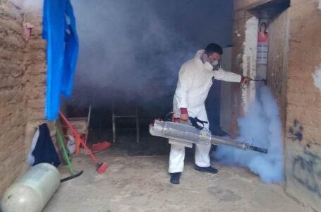 Adoptan medidas ante un nuevo caso de dengue importado en Amarilis