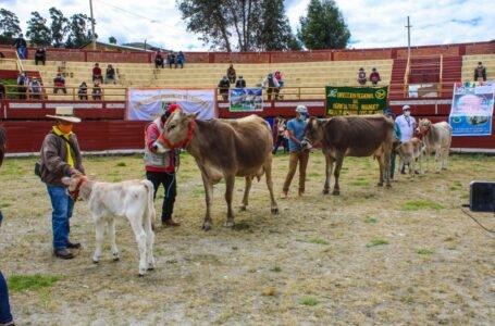 Invertirán S/ 12.8 millones para impulsar ganadería en 33 distritos de Huánuco