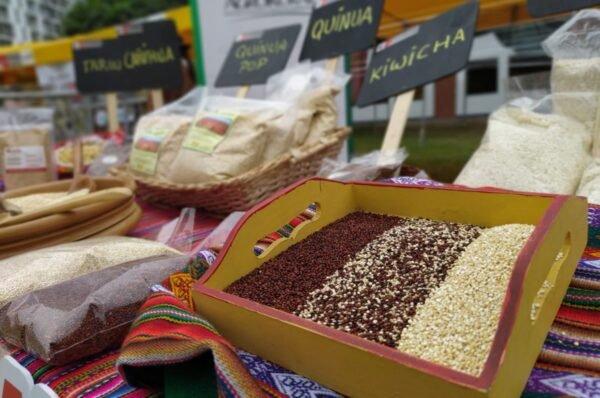 Salud y bienestar: granos andinos y su valor nutricional en tiempos de pandemia